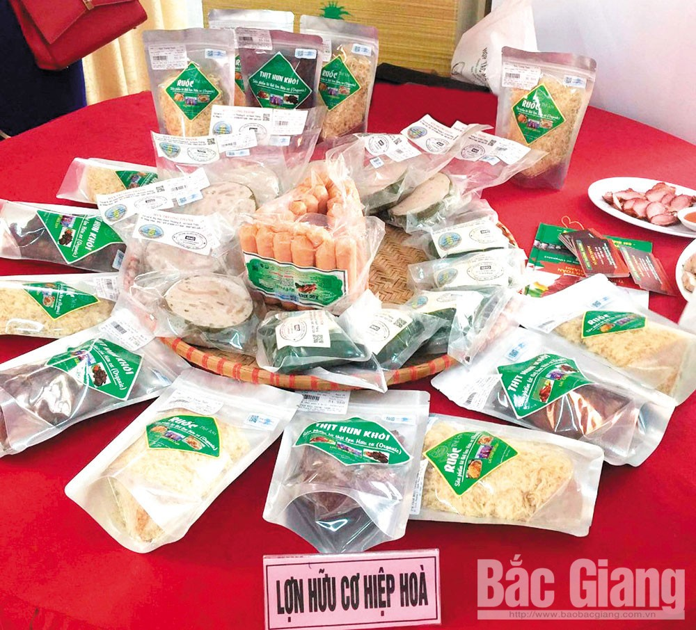 Organic agriculture production, Bac Giang province, inevitable trend,   high selling price, safe products, environmental protection, sustainable farming development