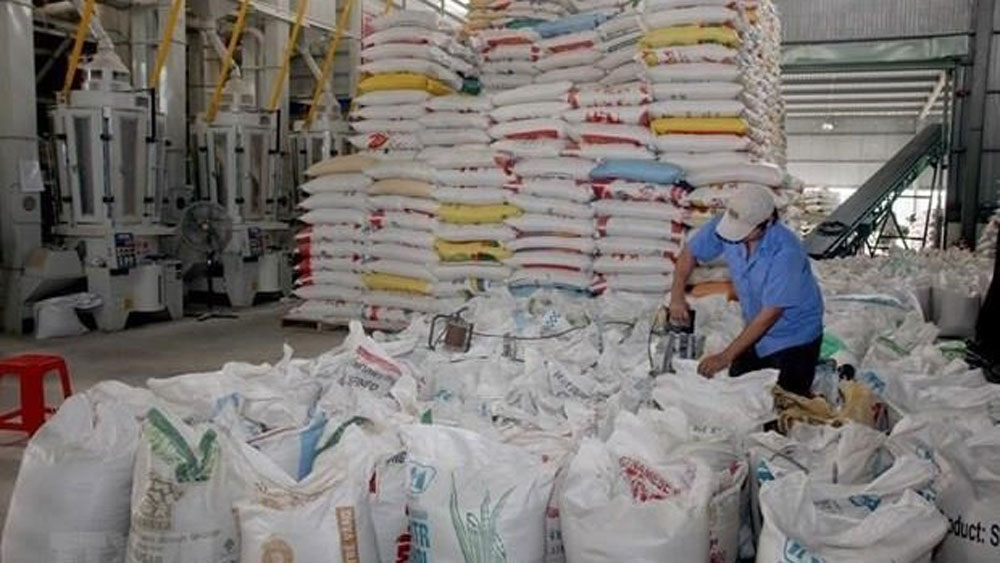 Eight-month rice exports reach nearly US$2 billion