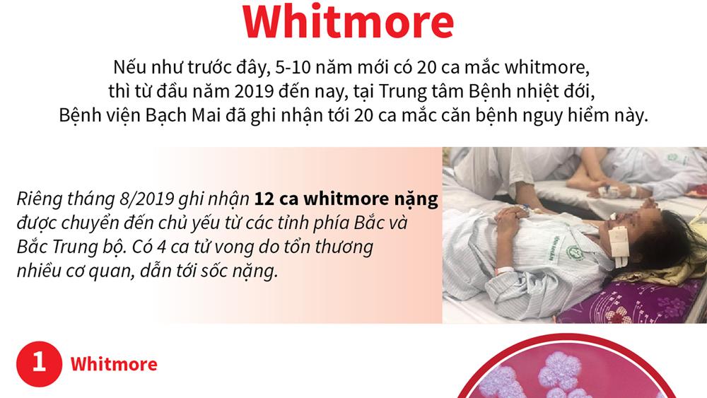 Những điều cần biết về bệnh truyền nhiễm nguy hiểm Whitmore