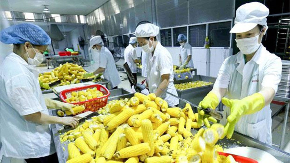 Door open wide for farm produce export to Europe