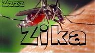Singapore ghi nhận trường hợp nhiễm vi rút Zika đầu tiên trong năm 2019
