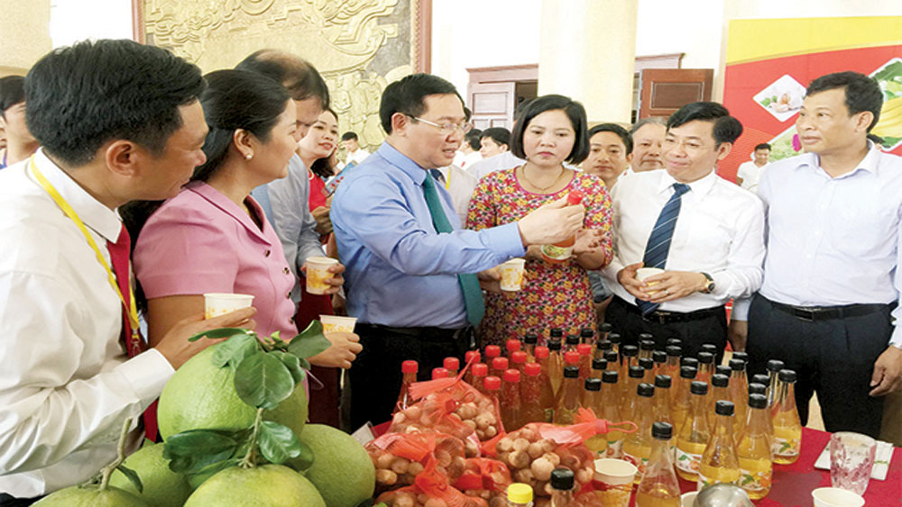 Kim Ngan vinegar, Bac Giang province, national typical rural industrial product,  Ministry of Industry and Trade, lychee originated vinegar, trade promotion, brand introduction