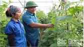 Anh Nguyễn Văn Công làm kinh tế giỏi, chung sức xây dựng quê hương