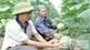 Xã Phúc Sơn: Nâng cao chất lượng các tiêu chí nông thôn mới