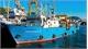 Nga bắt giữ 2 tàu Triều Tiên sau vụ tấn công tàu tuần tra