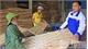 Bắc Giang: Thêm sinh kế, tăng thu nhập từ vốn vay ưu đãi