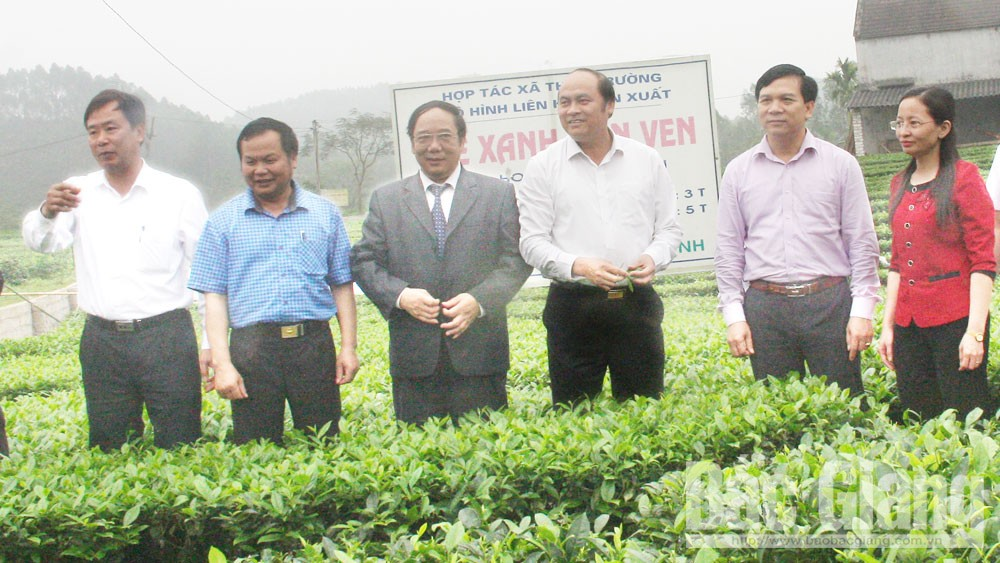 Timely policies, changing mindset help renovate Bac Giang's rural areas