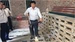 Vinh Phuc to develop Vinh Son into snake farming-tourism site