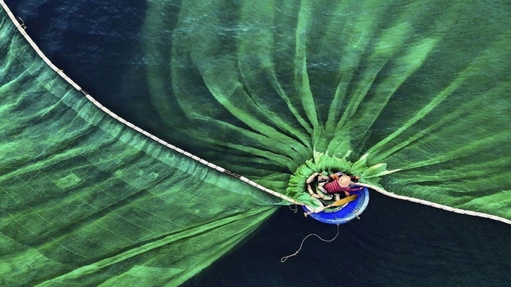 Vietnam wins first prize at the Nature Conservancy's Global Photo Contest