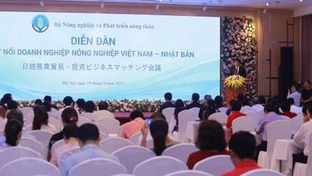 Forum, Vietnam-Japan agriculture cooperation, export management,  trade promotion, agriculture investment, rice value chain