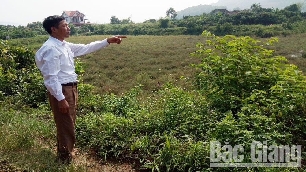 Xã Mỹ An (Lục Ngạn): Hết hạn thuê đất  vẫn đòi bồi thường