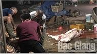 Bắc Giang: Xử phạt chủ cơ sở giết mổ gia súc không có giấy phép