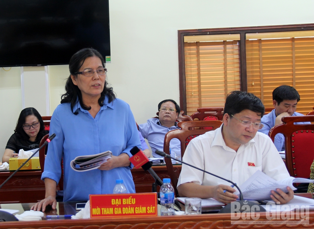 Bac Giang province, due attention, protecting and caring for children, Supervision Delegation, National Assembly, children abuse, basic preventing solution