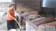 Phụ nữ Bộ CHQS tỉnh Bắc Giang: Thực hành tiết kiệm,  giúp nhau phát triển kinh tế