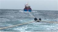 Cứu nạn thành công tàu cá cùng 7 ngư dân gặp nạn trên biển