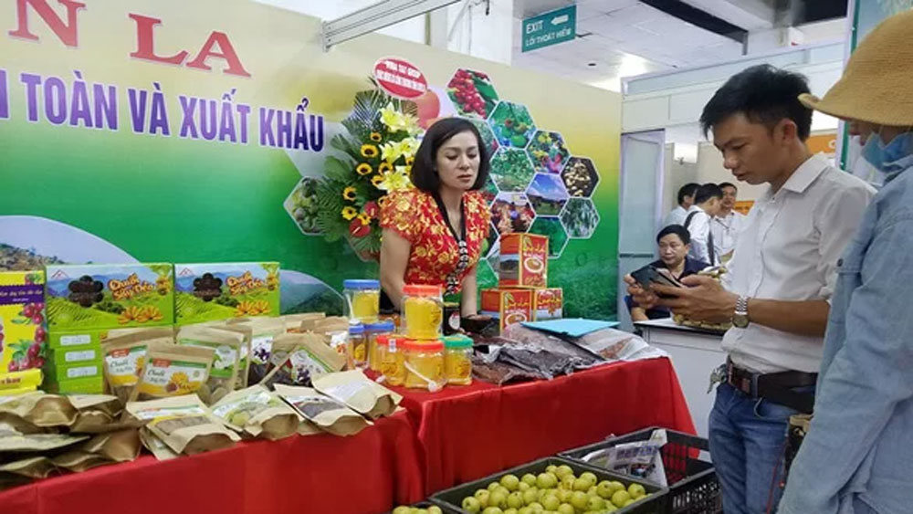 Saigonese spoilt with exhibition of delicacies from 45 provinces and cities