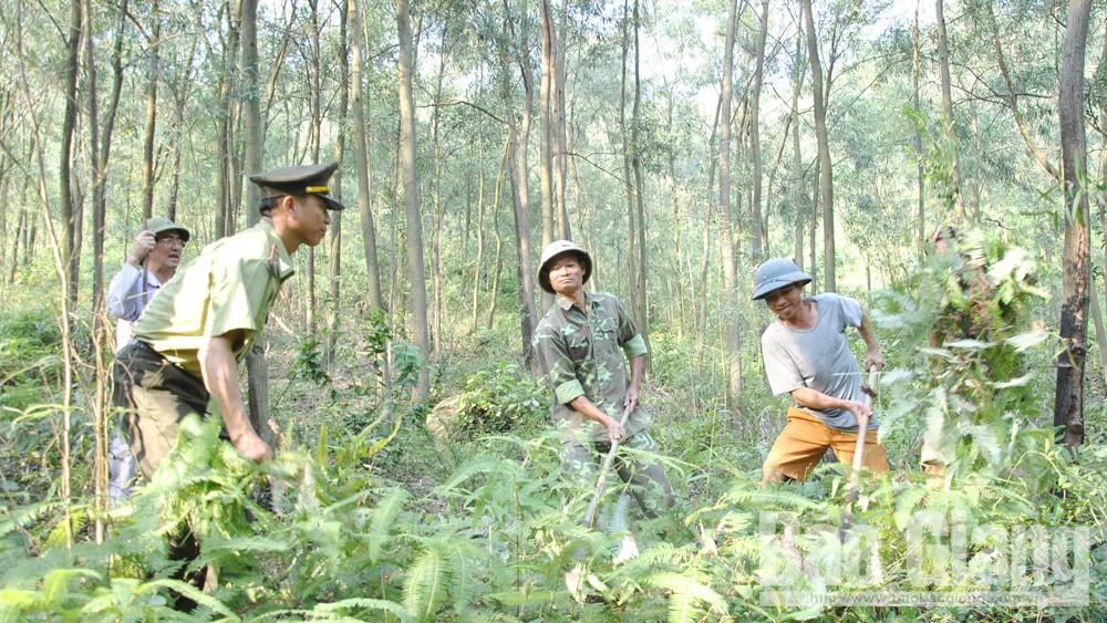 Bắc Giang, phòng cháy, chữa cháy rừng, Chi cục Kiểm lâm, mùa hanh khô