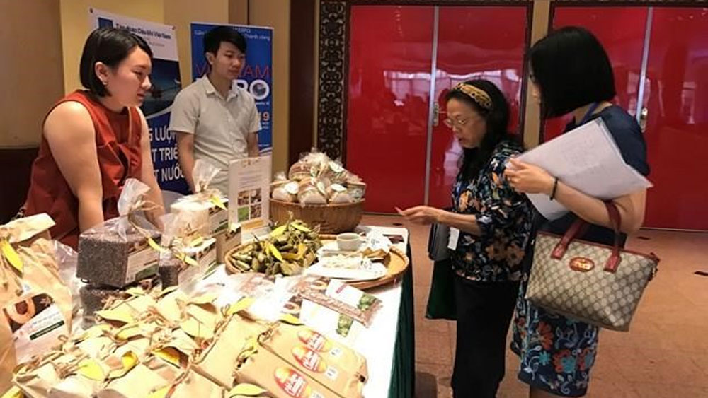 Vietnamese firms, Bulgarian, Romanian markets, Trade Promotion Agency, business trip, new opportunities, latest market information
