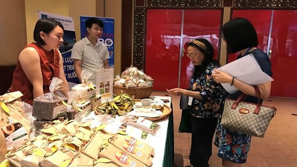 Vietnamese firms promote trade in Romania, Bulgaria