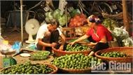 Số người tham gia BHXH tự nguyện ở Bắc Giang tăng