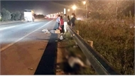 Bị ô tô lao vào khi băng qua cao tốc Hà Nội- Bắc Giang, ba nữ công nhân thương vong