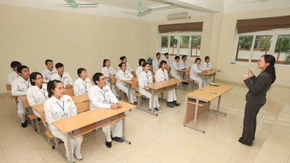 Japan, largest market, Vietnamese workers, Vietnamese guest workers, Vietnamese employees, traditional labour export markets