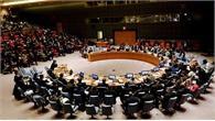Hội đồng Bảo an họp kín sau khi Thổ Nhĩ Kỳ tấn công Syria