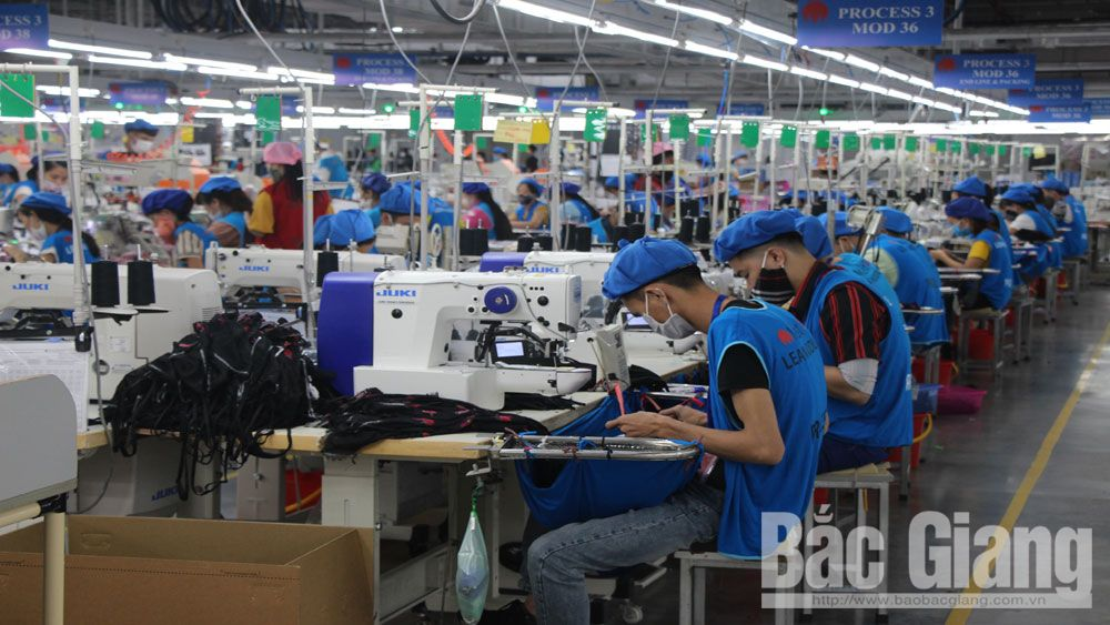 Bac Giang province, local enterprises, production for export, export markets, overall export growth, European countries, excellent performance