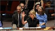 Mỹ, Nga phủ quyết tuyên bố của EU về chiến dịch của Thổ Nhĩ Kỳ ở Syria
