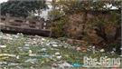 Kênh Yên Lại qua thị trấn Đồi Ngô (Lục Nam) xuống cấp, ô nhiễm