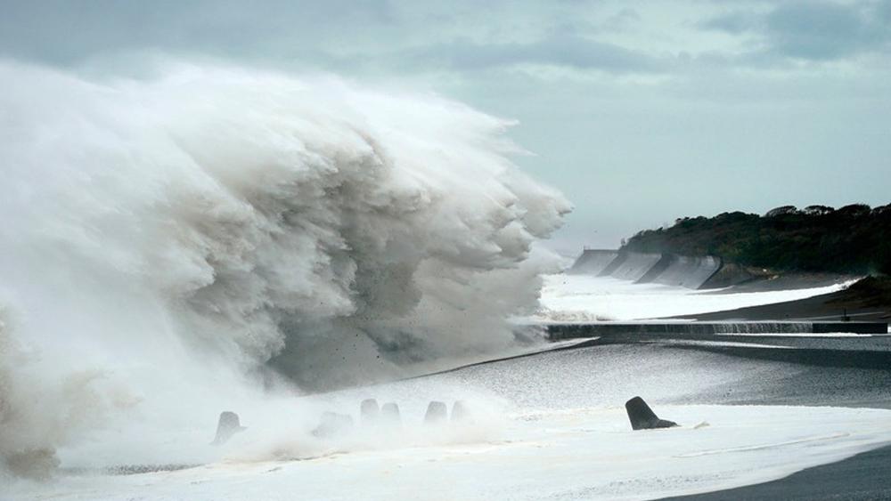 người Việt mất tích, siêu bão Hagibis, người Việt thoát chết, siêu bão ở Nhật bản, tàu chở hàng bị đắm