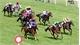 Trao quyết định đầu tư dự án trường đua ngựa đầu tiên tại Việt Nam
