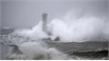 Tàu hàng Panama chìm ở vịnh Tokyo, chưa rõ số phận 2 thủy thủ Việt