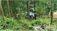 Bắc Giang: Phát hiện thi thể Phó Chủ tịch UBND xã Nội Hoàng (Yên Dũng) trên núi