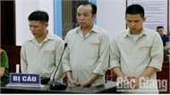 44 năm tù cho 3 bị cáo mua bán trái phép chất ma túy
