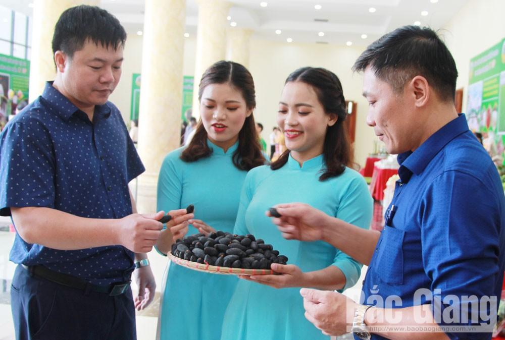 Bắc Giang, mỗi xã một sản phẩm, kinh tế nông thôn, OCOP, sản phẩm địa phương