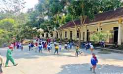 Nghiện ma túy, thầy giáo Nghệ An xin thôi chức hiệu phó trường tiểu học