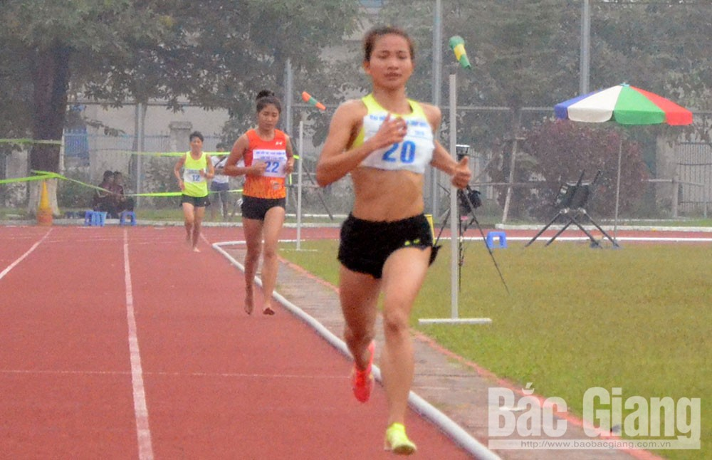 Bac Giang sports, Bac Giang province, imprints of female athletes, high-achievement sports, strong impressions, important contributions