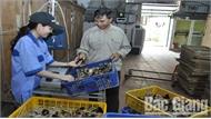 Bắc Giang xây dựng cơ sở chăn nuôi an toàn: Kiểm soát dịch bệnh, tăng sức cạnh tranh cho sản phẩm