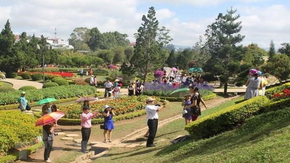 Flower Festival, Da Lat city, December, biennial cultural and tourism festival, Da Lat and Flowers, colourful flowers