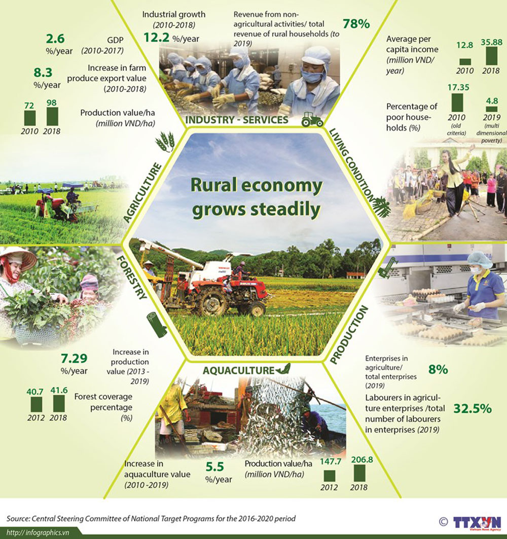 Rural economy, grows steadily, different categories, new rural building, economic development