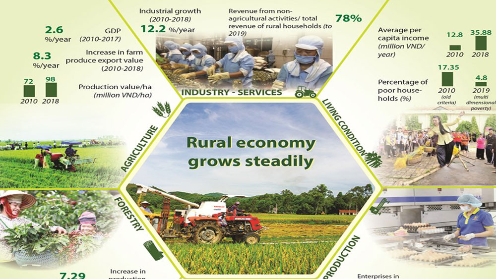 Rural economy grows steadily