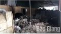 Huyện Lục Nam (Bắc Giang) xảy ra 2 vụ cháy