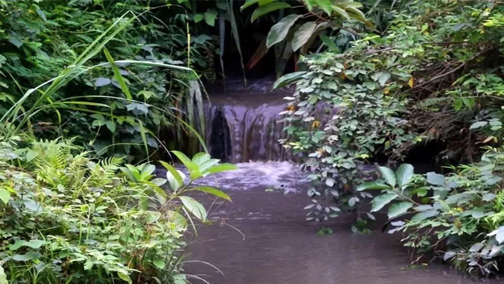 9 tấn dầu thải, đổ vào, nguồn nước sông Đà