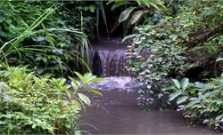 Gần 9 tấn dầu thải đổ vào nguồn nước sông Đà