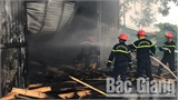 Cháy xưởng chế biến gỗ tại huyện Việt Yên (Bắc Giang)