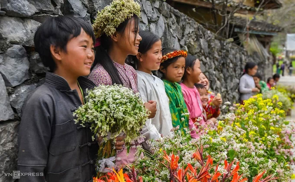 Buckwheat flowers, famous movie location, visitors to Ha Giang, Ha Giang province, The Story of Pao