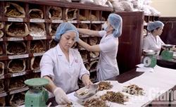 Bệnh viện Y học cổ truyền tỉnh Bắc Giang phát huy tinh hoa y học dân tộc