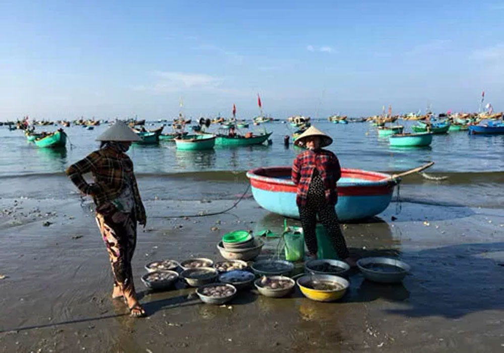 Central Vietnam village, fresh seafood,  Mui Ne fishing village, popular tourist destination,  fishing boats, popular tourism attraction