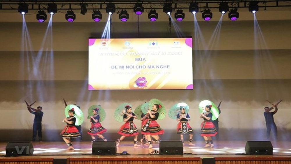 Vietnamese students in RoK gather for 15th festival